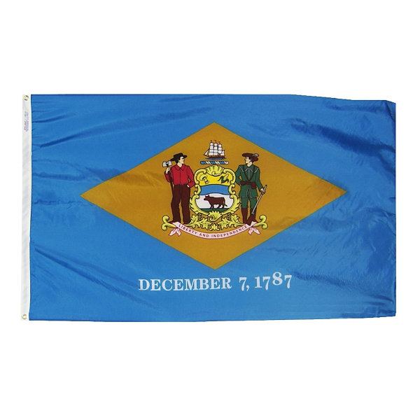 Delaware State Flag 4x6 ft. Nylon SolarGuard Nyl-Glo 100% Made in USA to Official State Design Specifications by Annin Flagmakers.  Model 140870