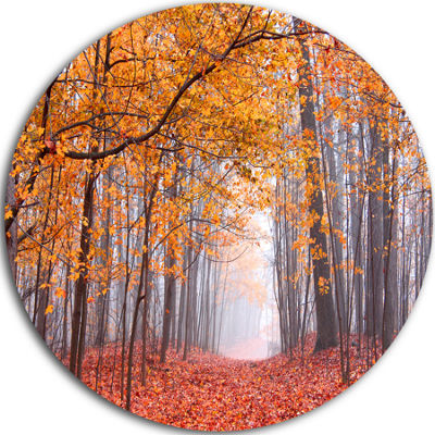 Design Art Beautiful Trees with Fallen Leaves Circle Landscape Circle Metal Wall Art
