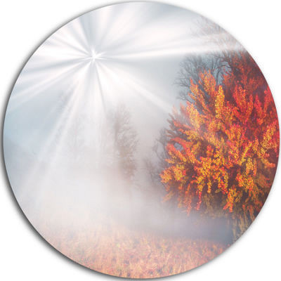 Design Art Misty Sun in Red Autumn Forest Landscape Photography Circle Metal Wall Art