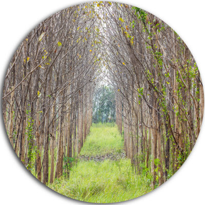 Design Art Pathway Through Fall Green Trees Landscape Photography Circle Metal Wall Art