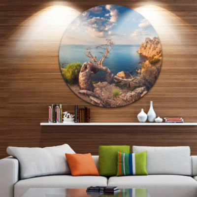 Design Art Sunny Morning with Old Tree Seashore Photo Circle Metal Wall Art