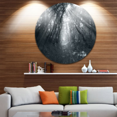 Design Art Sun Rays Through Gray Trees Circle Landscape Circle Metal Wall Art