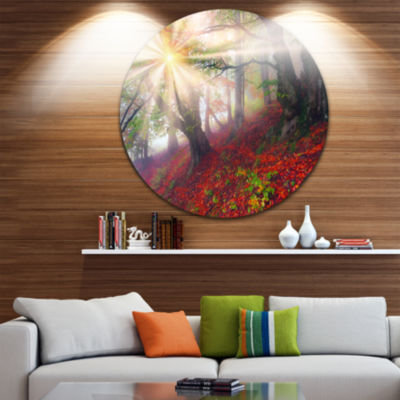 Design Art Sun in Forest After Heavy Storm Landscape Photography Circle Metal Wall Art