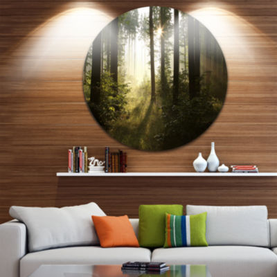 Design Art Early Morning Sun in Misty Forest Landscape Photography Circle Metal Wall Art