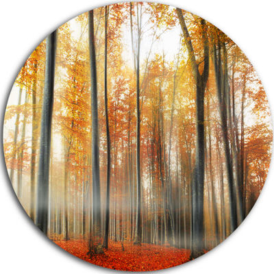 Design Art Red and Yellow Leaves in Fall Circle Landscape Circle Metal Wall Art