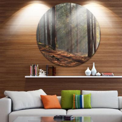Design Art Rays of Sun in Dense Forest Landscape Oversized Circle Wall Art