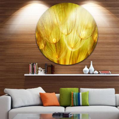 Design Art Soft Yellow Dandelion Flowers Floral Photography Circle Metal Wall Art