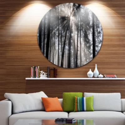 Design Art Sunbeams through Black White Forest Ultra Vibrant Forest Metal Circle Wall Art Print