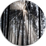 Design Art Sunbeams through Black White Forest Ultra Vibrant Forest Metal Circle Wall Art Print
