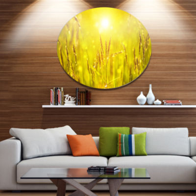 Design Art Yellow Grass Flower at Sunset LandscapeMetal Circle Wall Art