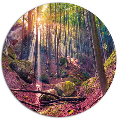 Design Art Autumn Morning in Mystical Woods LargeLandscape Metal Circle Wall Art