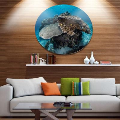 Design Art Corals and Fish in Komodo National ParkSeashore Metal Circle Wall Art