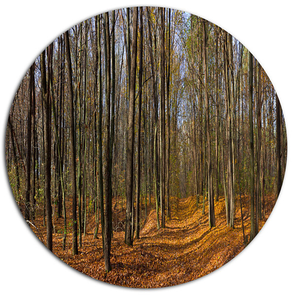 Design Art Dense Fall Forest Panorama Forest MetalCircle Wall Art