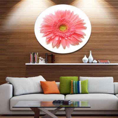 Design Art Single Daisy on White Background FloralMetal Circle Wall Art
