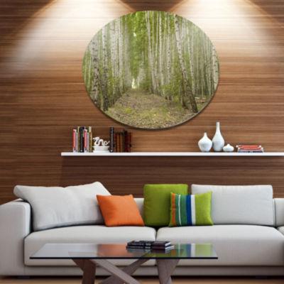 Design Art Dense Birch Grove in Summer Day ForestMetal Circle Wall Art