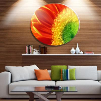 Design Art Gerber Daisy Flower Petals Disc FloralCircle Metal Wall Decor