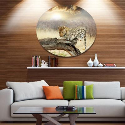 Design Art Leopard Relaxing on Tree African MetalCircle Wall Art