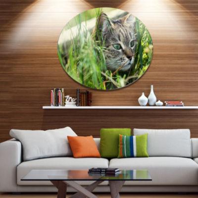 Design Art Lovely Kitten in Grass Animal Metal Circle Wall Art