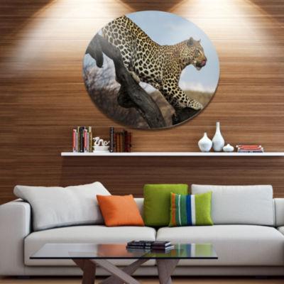 Design Art Leopard Walking on Tree African Metal Circle Wall Art