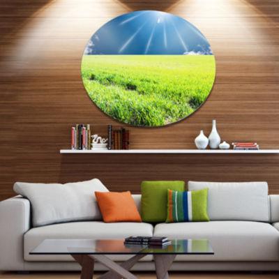 Design Art Sunny Field with Green Grassland Oversized Landscape Oversized Circle Metal Artwork