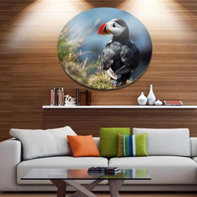 Design Art Cute Puffin Relaxing Animal Metal Circle Wall Art