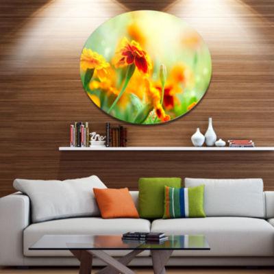 Design Art Orange Tagetes Marigold Flowers Disc Floral Circle Metal Wall Decor