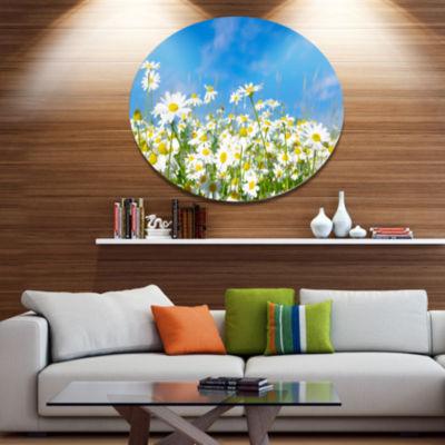 Design Art White Daisies under Bright Blue Sky Disc Floral Circle Metal Wall Decor