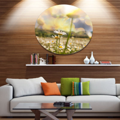 Design Art Amazing Chamomile Flower Field Disc Floral Circle Metal Wall Decor