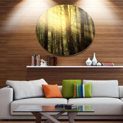 Design Art Dense Green Sunny Forest Landscape Oversized Circle Metal Artwork