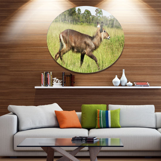Design Art Waterbuck Antelope in Green Grass ExtraLarge African Oversized Circle Metal Artwork