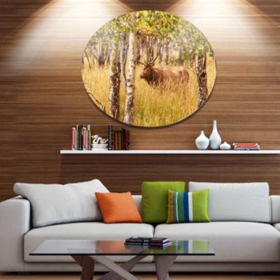 Design Art Deer in Thick Forest Grassland Oversized Landscape Oversized Circle Metal Artwork