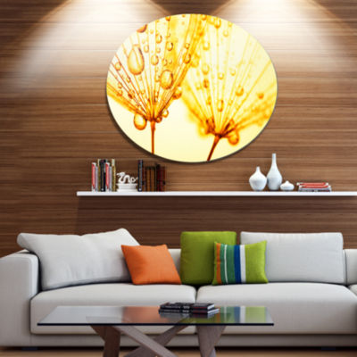 Design Art Dandelion Seeds with Water Drops Disc Floral Circle Metal Wall Decor
