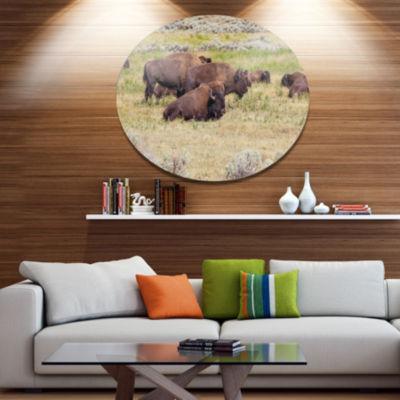Design Art Grazing Gang of Buffalos Animal Metal Circle Wall Art