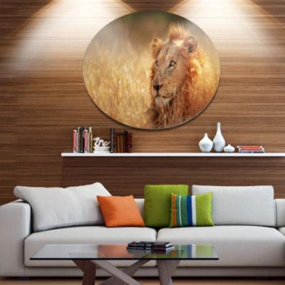 Design Art Relaxing Lion in Grassland African Metal Circle Wall Art
