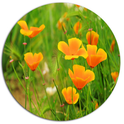 Design Art Bright Yellow Poppy Flowers Floral Metal Circle Wall Art