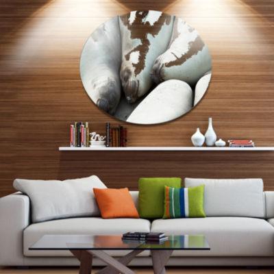 Design Art Sea Elephants Taking Nap Abstract MetalCircle Wall Art