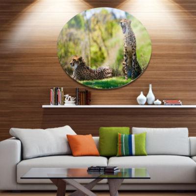 Design Art African Cheetahs Relaxing in Grass African Metal Circle Wall Art
