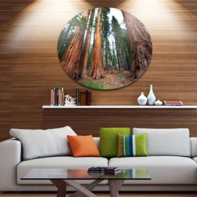 Design Art Three Large Sequoya Trees African Landscape Metal Circle Wall Art