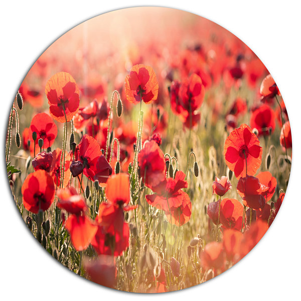 Design Art Beautiful Tuscan Red Poppies Floral Metal Circle Wall Art