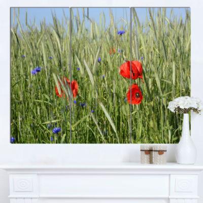 Designart Rural Landscape With Red Poppies LargeLandscape Canvas Art - 3 Panels