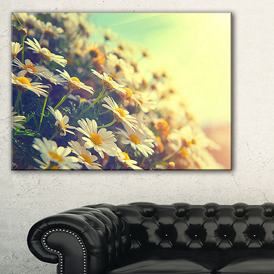 Designart Nature With Blooming Chamomiles Canvas Art