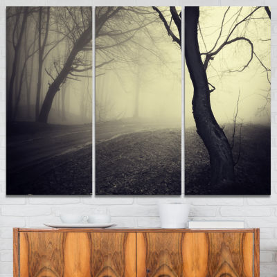 Designart Old Looking Fall Forest Shoot 3-pc. Canvas Art