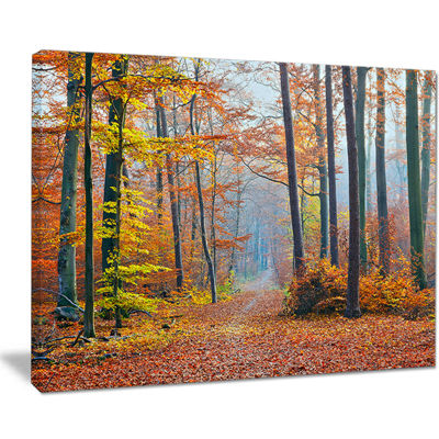 Designart Orange Green Fall Leaves In Forest Canvas Art