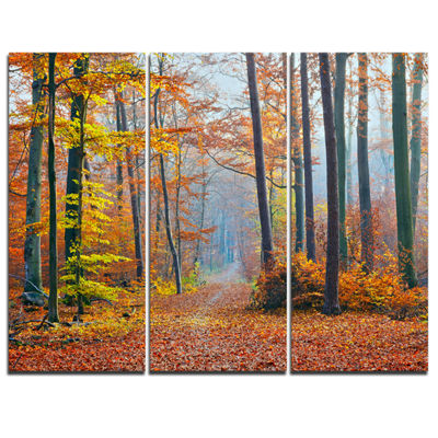 Designart Orange Green Fall Leaves In Forest 3-pc. Canvas Art