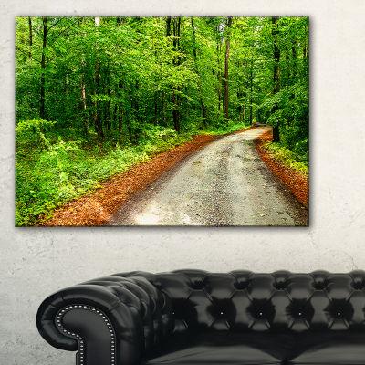Designart Pathway In Deep Moss Forest Canvas Art
