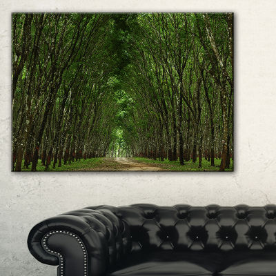 Designart Pathway In Thick Green Forest Canvas Art