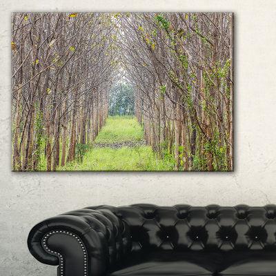 Designart Pathway Through Fall Green Trees Canvas Art