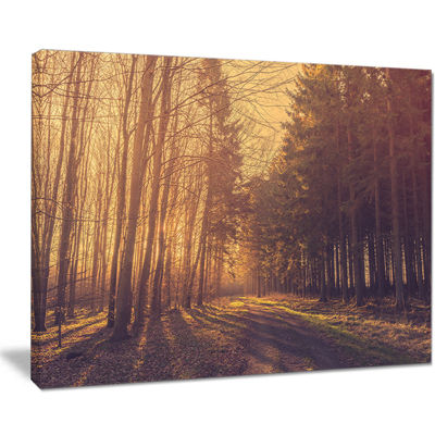 Designart Pine Tree Forest By Road Canvas Art
