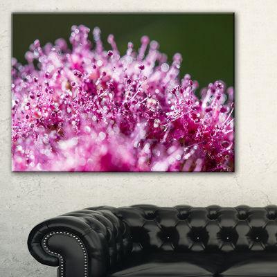 Designart Pink Little Flowers Close Up View Canvas Art