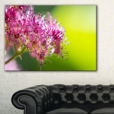 Designart Pink Little Flowers In Green Canvas Art